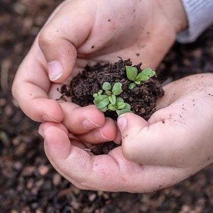 green economy, immagine in evidenza